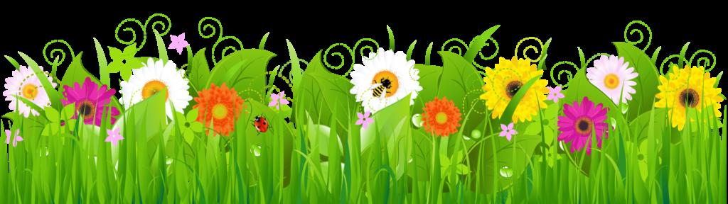 Community Garden – UPDATE